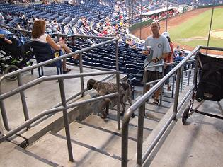 Bark at the Ball Park III - Photo by Joshua T. Gillion