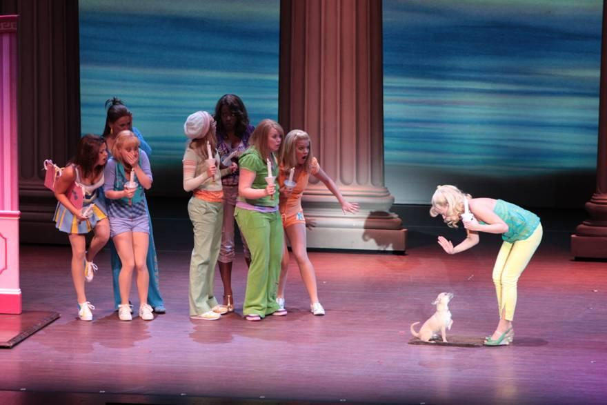 Legally Blonde Preformance at Ruth Eckerd Hall. Photo by Wayne Cathel.