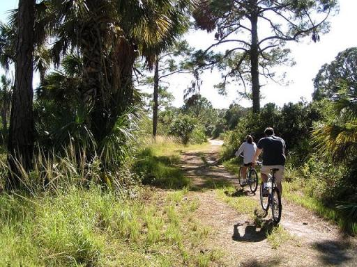 Osprey Trail at Honeymoon Island State Park