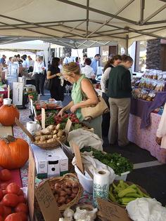 Farmer's Market in Downtown Clearwater - Photo by Heidi Lux