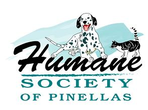 The Humane Society of Pinellas Holds Bark at the Ball Park