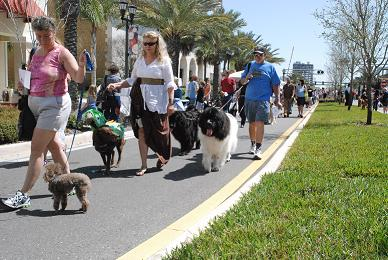 5th Annual Downtown Clearwater Pet Festival - Photo by RGP Media