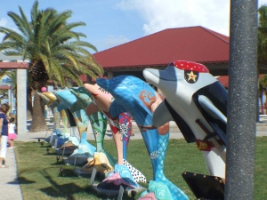 Clearwater Dolphins - Leave a Map-Trail
